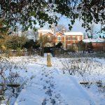 Brampton Park January
